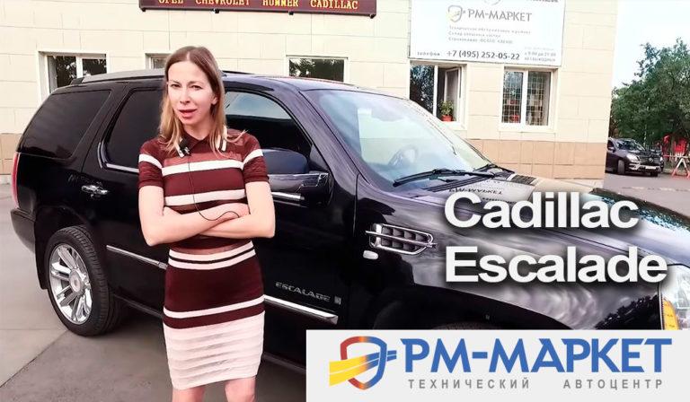 Лиса Рулит в РМ-маркет Cadillac Escalade